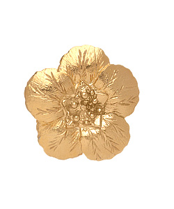 stella_lisastewart.goldflower.ring